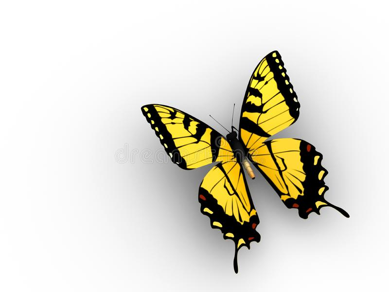 Butterfly Free Stock Images