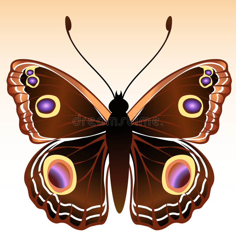 Free Butterfly Royalty Free Stock Image - 8171186