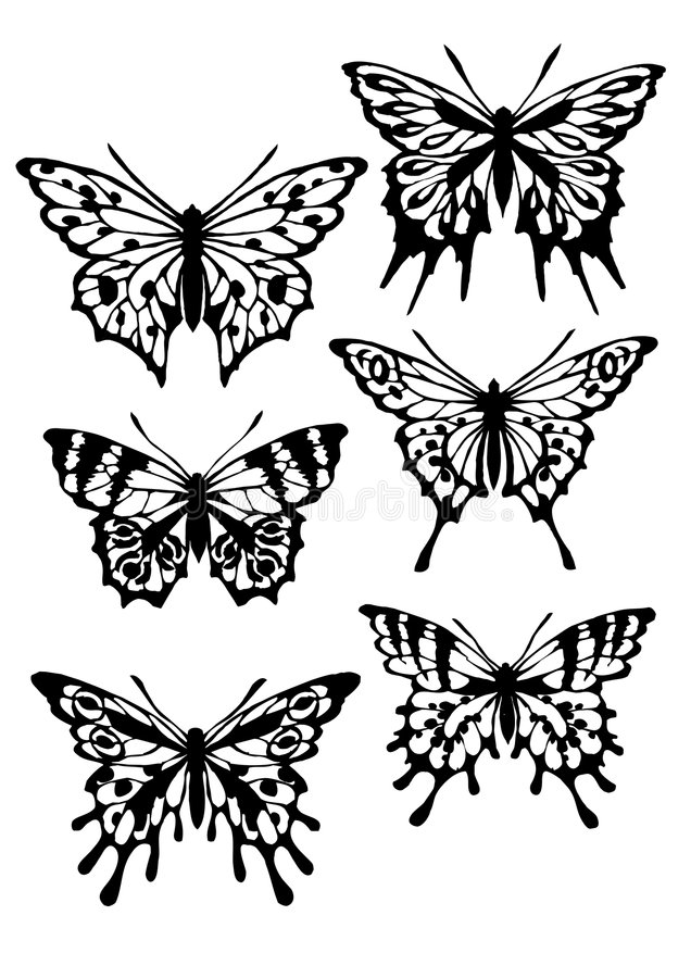 Butterfly. Various butterfly silhouettes on white background