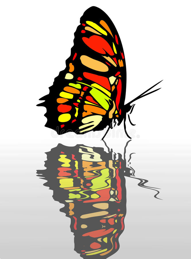 Download Butterfly at apring stock illustration. Image of environment - 23991023
