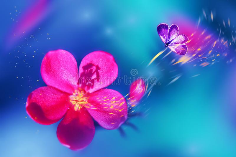 Butterfly on a beautiful pink tropical flower. Natural tropical summer background. Selective focus. Yellow petals in motion royalty free stock photo