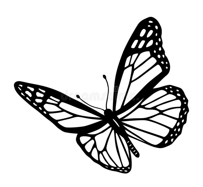 Free Butterfly Black And White Tribal Tattoo Cut Out Silhouette Stock Photo - 177024110