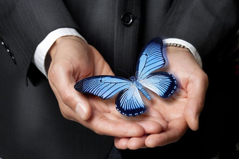Butterfly Business Ethics Hands Philanthropy. A businessman holding a holding a blue butterfly royalty free stock photography