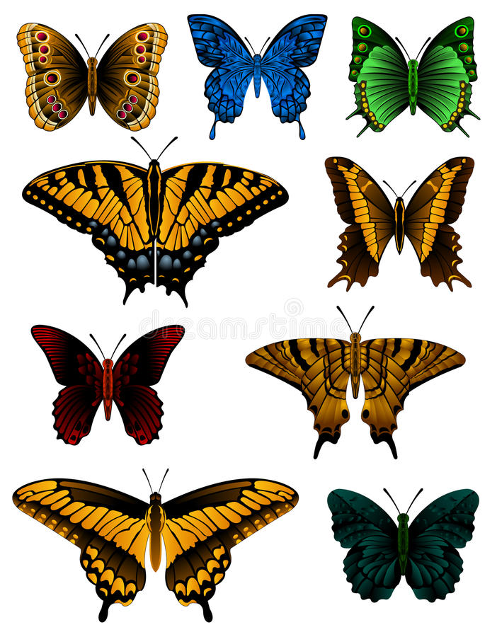 Butterfly Collection royalty free illustration