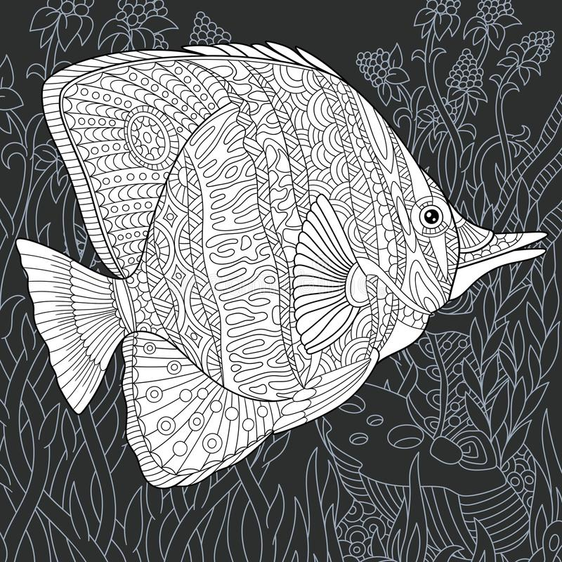 Butterfly fish in black and white style stock illustration