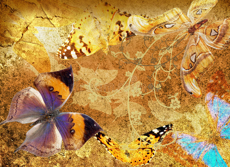 Butterfly and flowers  grunge
