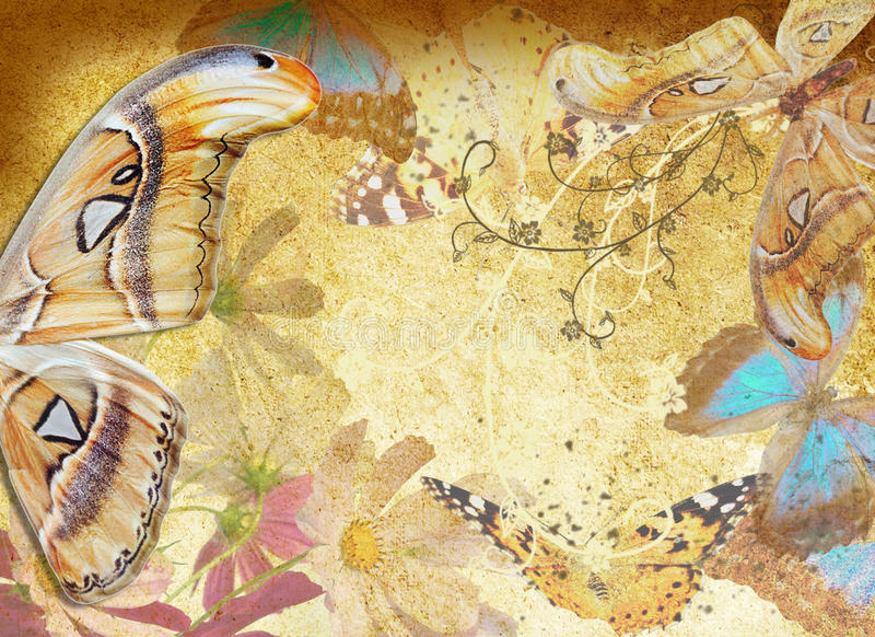 Download Butterfly And Flowers Grunge Stock Illustration - Illustration: 26800464