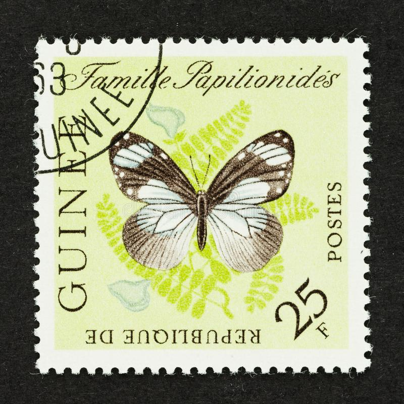 Butterfly on Guinea Stamp royalty free stock images