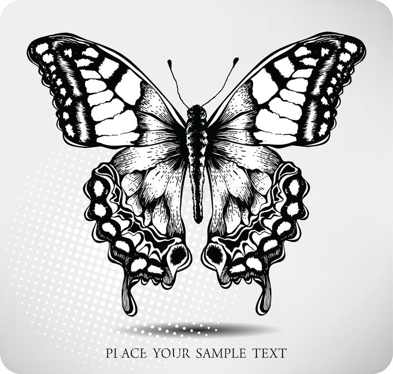 Butterfly Hand Drawing.Vector Stock Vector - Illustration ...