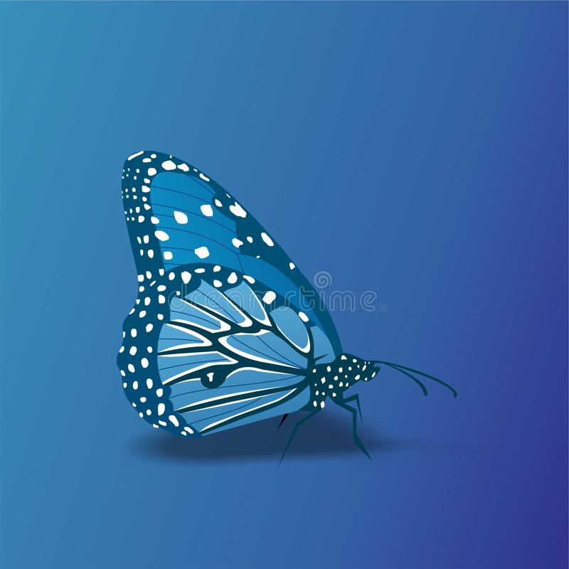Butterfly icon, Cute Cartoon Funny Character with Colorful Wings, Flying Insect – Flat Design. This is `Butterfly icon, Cute Cartoon Funny Character with stock illustration