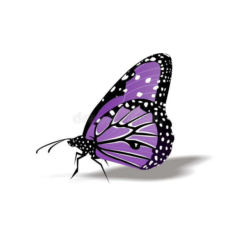 Butterfly icon, Cute Cartoon Funny Character with Colorful Wings, Flying Insect in White Background,Flat Design. This is `Butterfly icon, Cute Cartoon Funny stock illustration