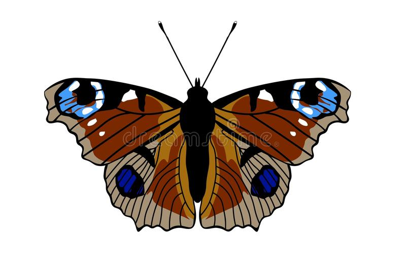 Peacock Butterfly illustration royalty free illustration