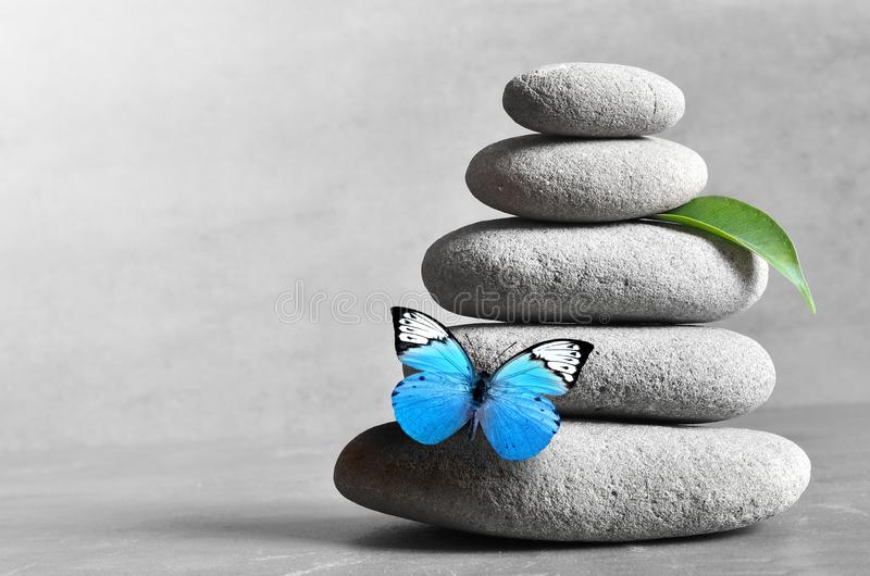 Butterfly, light and balanced stones. Green leaf. Zen and spa concept.  stock photo