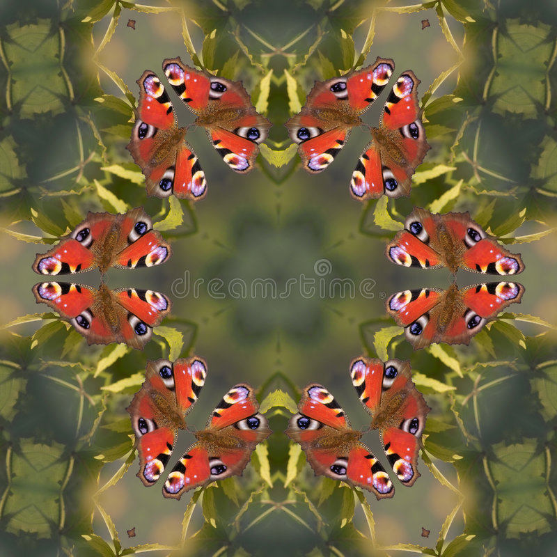Download Butterfly mandala stock illustration. Illustration of repeating - 283855