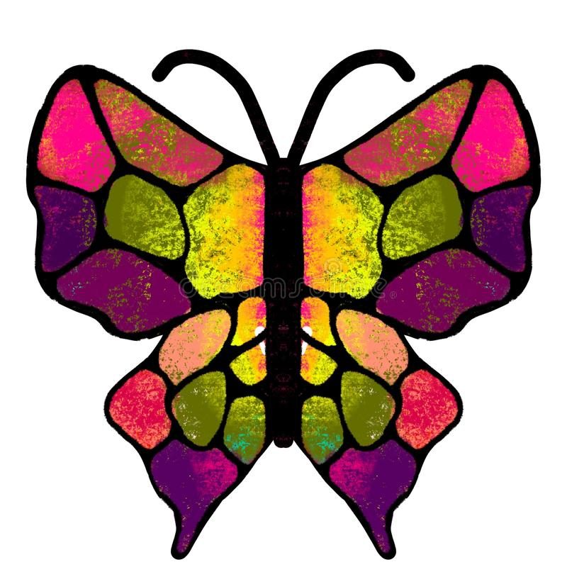 Butterfly. The multi-colored, painted butterfly. Insect illustration vector illustration