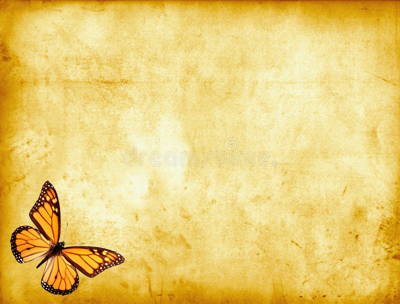 Butterfly on Parchment royalty free illustration