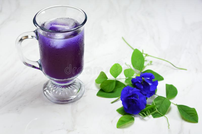 Butterfly pea tea with ice royalty free stock photography