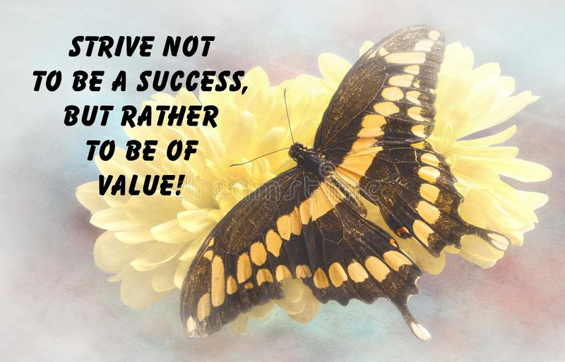 Butterfly quote stock illustration