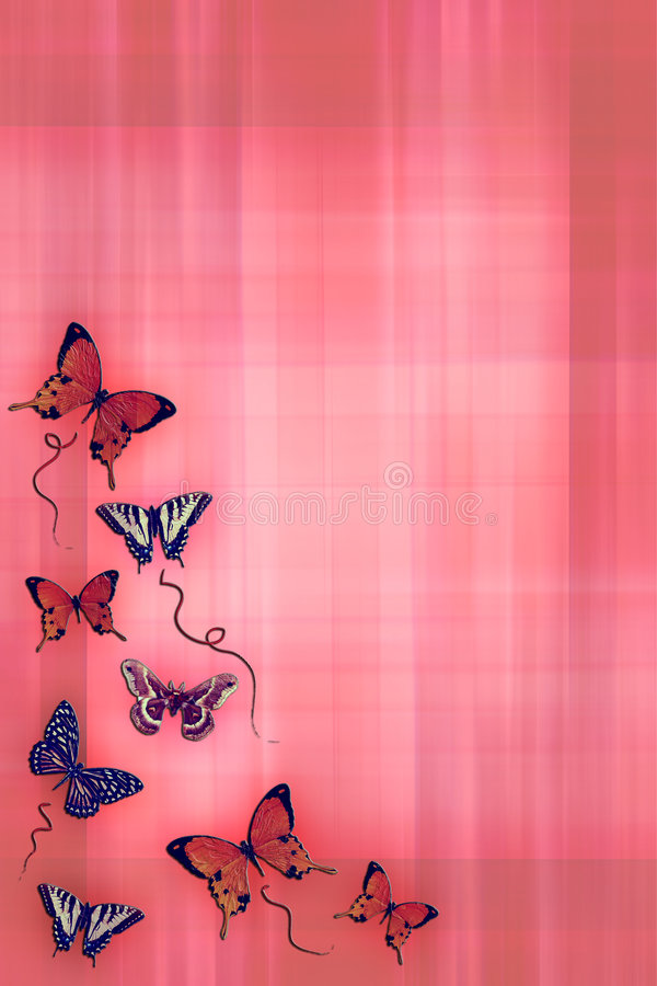 Butterfly series. stock photos