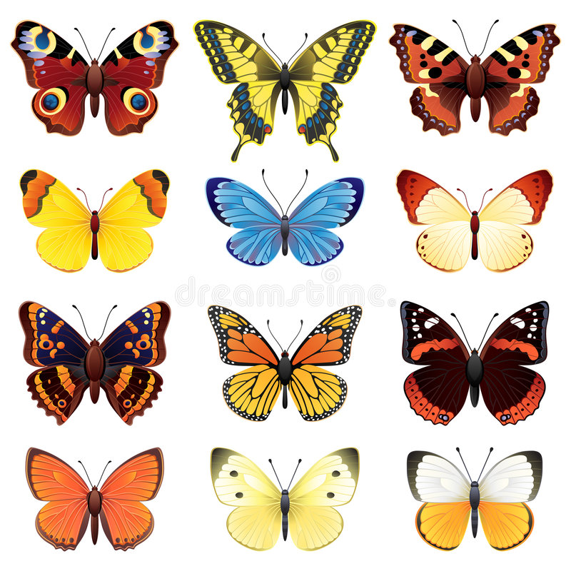 Butterfly set royalty free illustration