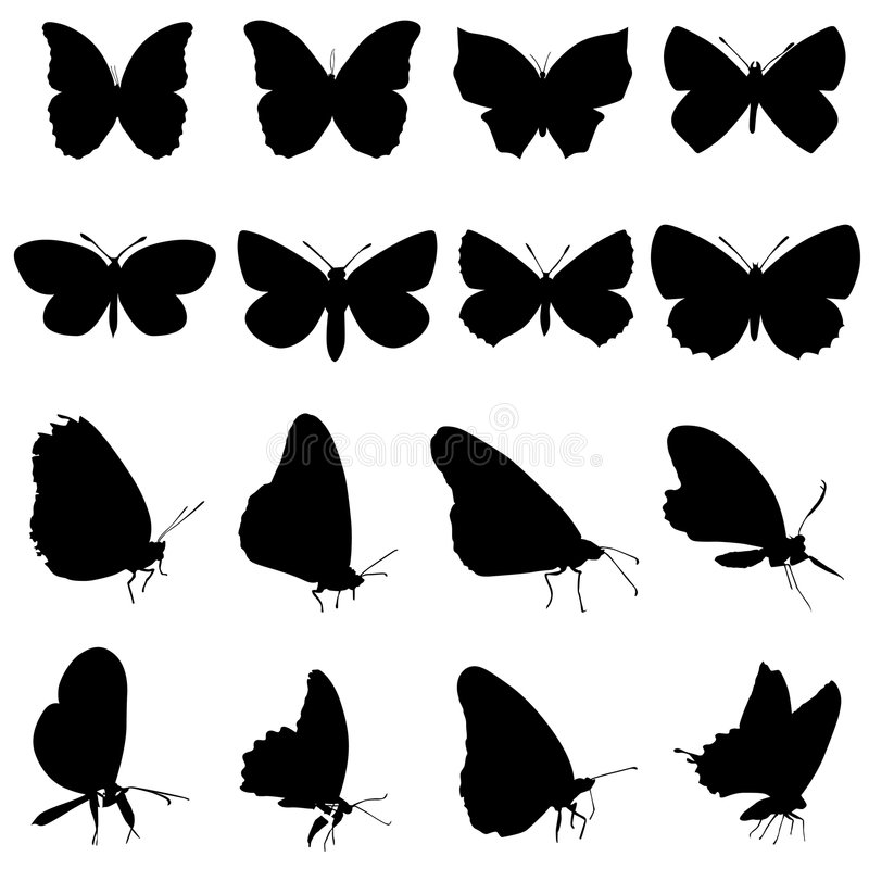Butterfly set royalty free illustration