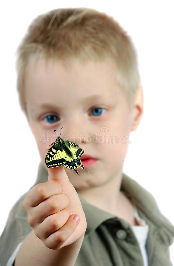 Butterfly sitting on the hand of a child. Child with a butterfly. Selective focus. Butterfly sitting on the hand of a child. Child with a butterfly royalty free stock photo