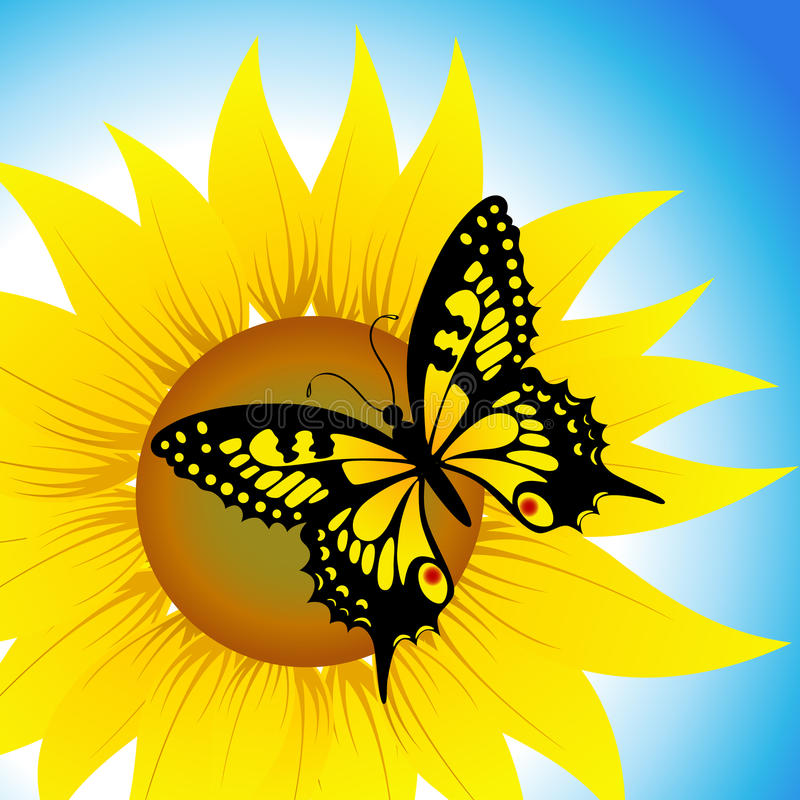 Download Butterfly Sitting On Sunflower Stock Vector - Image: 13782835