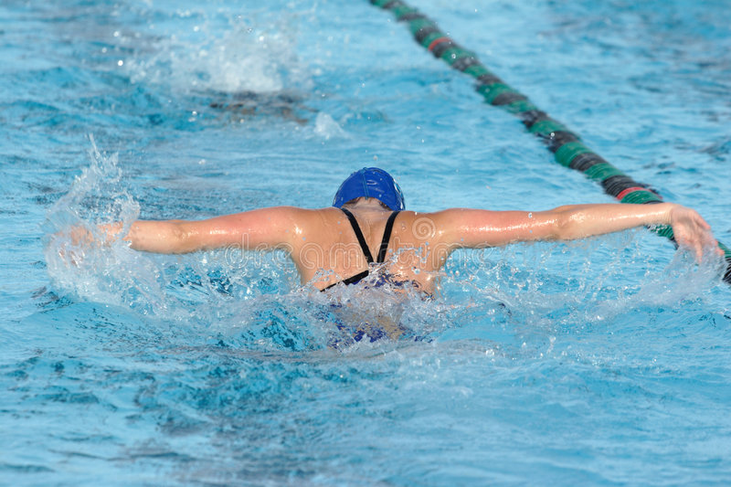 Download Butterfly Stroke stock photo. Image of health, exercise - 4604482