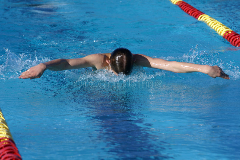 Download Butterfly Swimmer stock photo. Image of active, healthy - 1868268