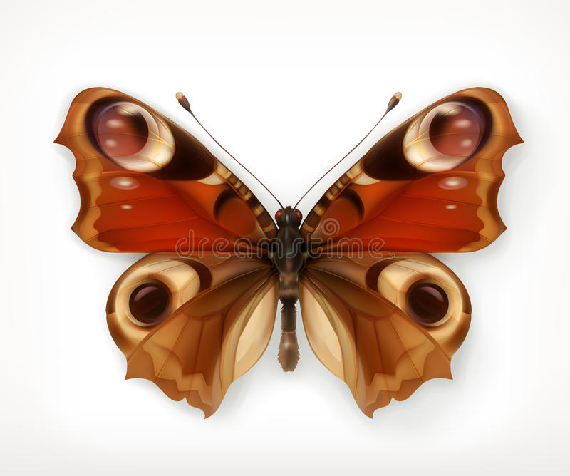 Butterfly vector icon. Butterfly, vector icon, isolated on white background vector illustration