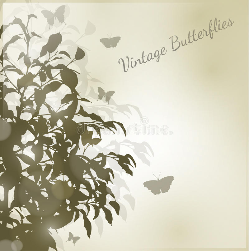 Butterfly Vintage Stock Image