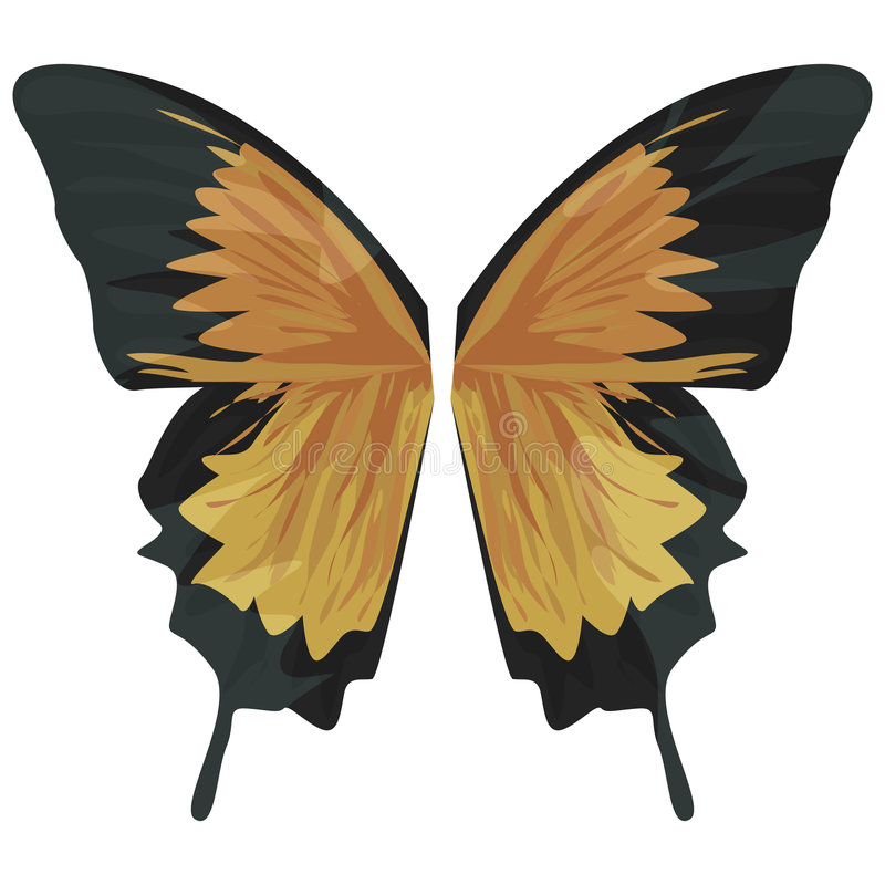 Butterfly Wings with clipping path. Illustration with clipping path royalty free illustration