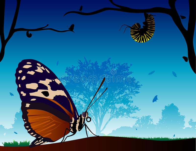 Butterfly World. A beautiful scenery of butterfly's. One large detailed butterfly is in the foreground and several other butterfly silhouettes are in the stock illustration