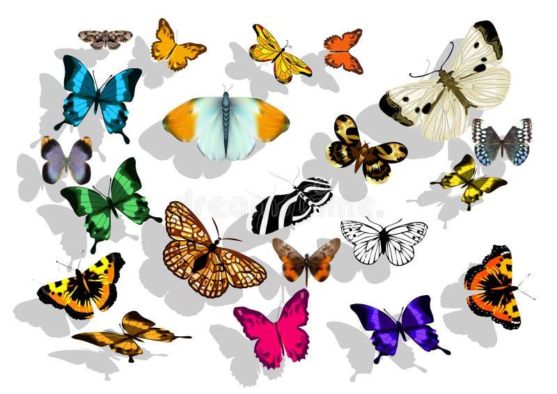 butterflys ustawiający royalty ilustracja