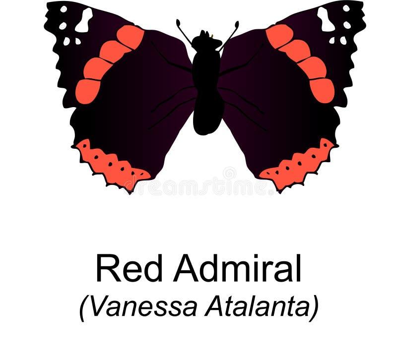 butterfy red för amiral stock illustrationer