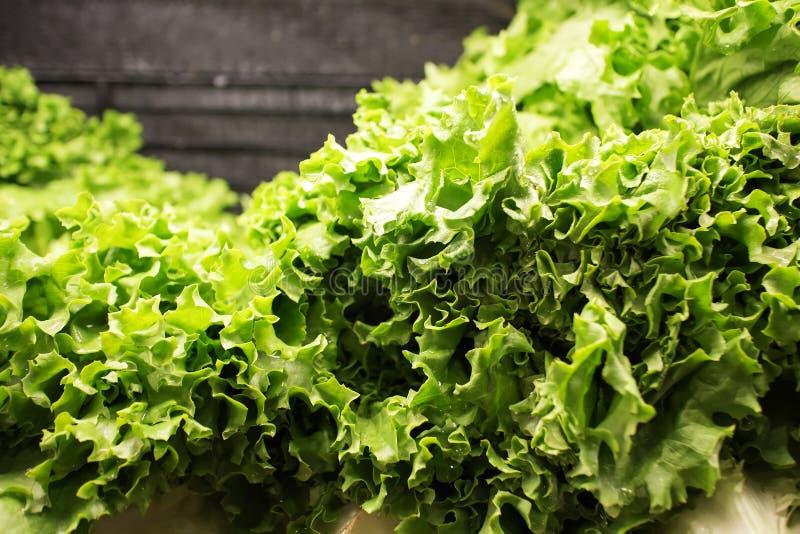 Download Butterhead Lettuce At Market Stock Image - Image: 28406389