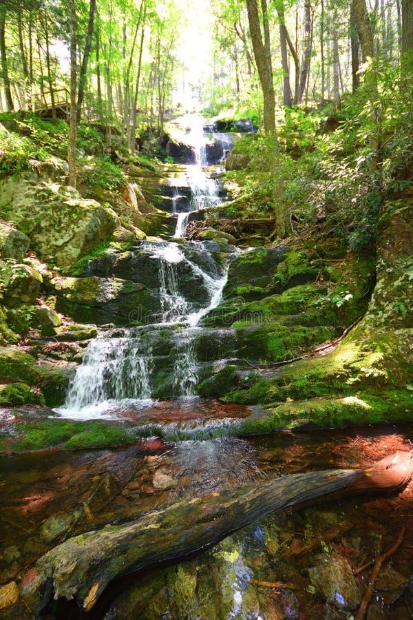 Buttermilch-Fall New-Jersey lizenzfreie stockbilder