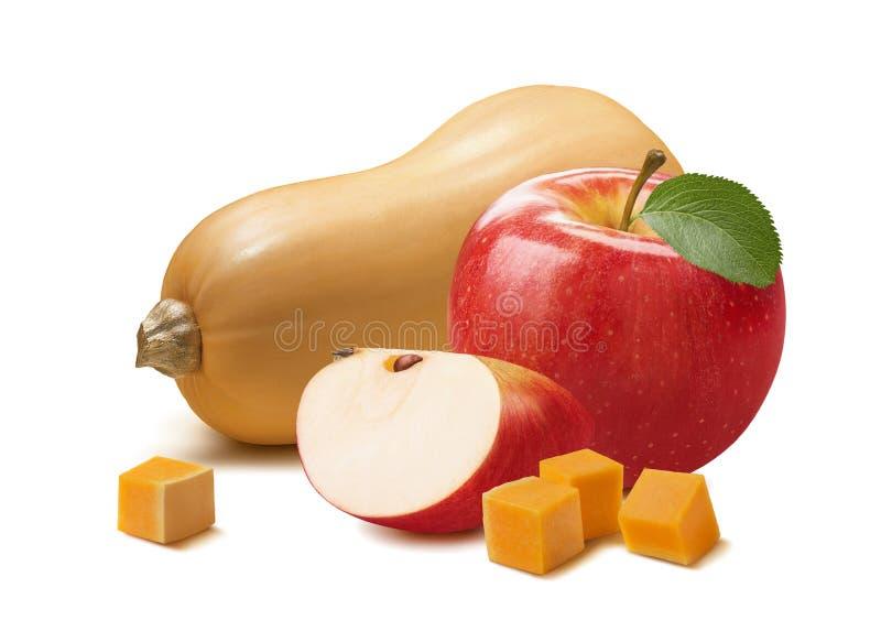 Butternut e maçã vermelha isolados no fundo branco imagem de stock royalty free