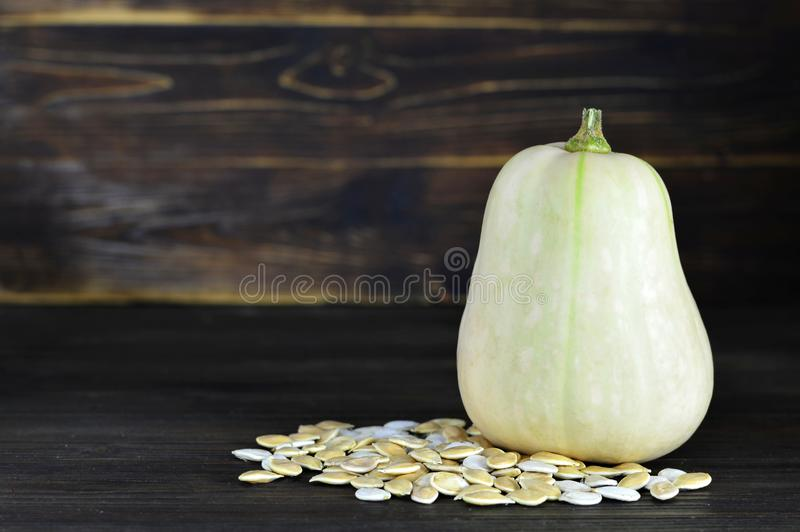 Butternut pumpkin. On wooden background royalty free stock photography