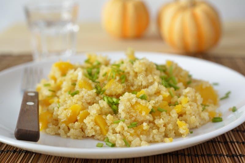 Butternut quinoa pilaf. Butternut squash quinoa pilaf on a plate stock image