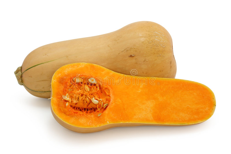 Butternut squash. Isolated on white background stock images