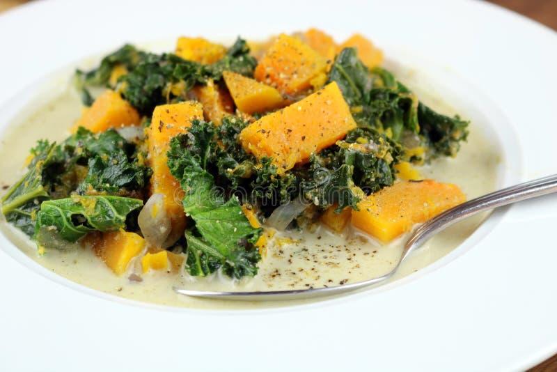 Butternut Squash Chowder. Butternut squash, kale and coconut milk chowder stock image