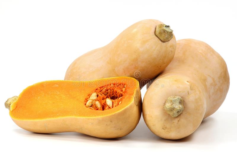 Butternut squash. Isolated on white background stock photos