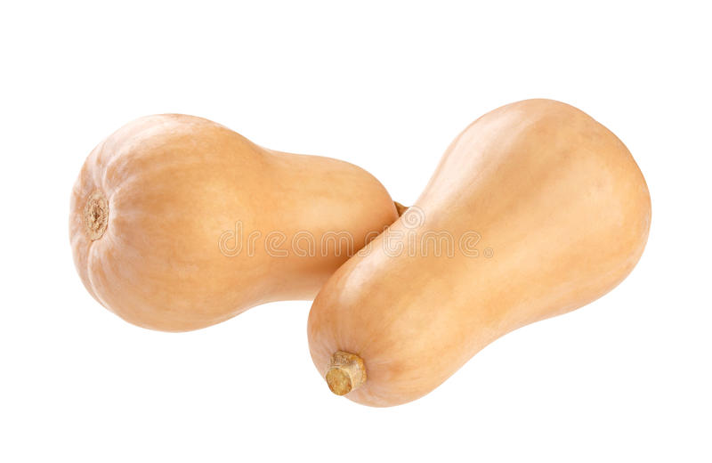 Butternut squash isolated on a white background. Fresh butternut squash isolated on a white background, with clipping path stock photography