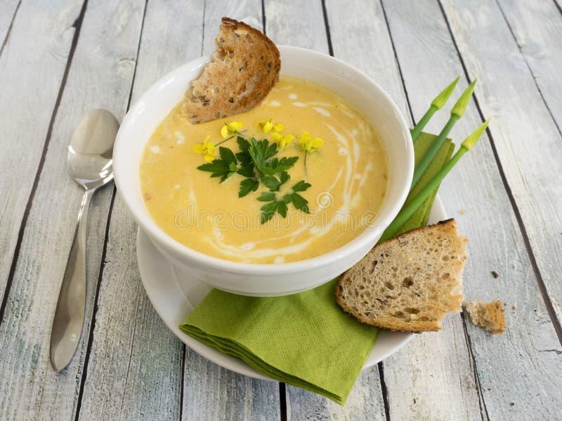 Butternut squash soup stock photo