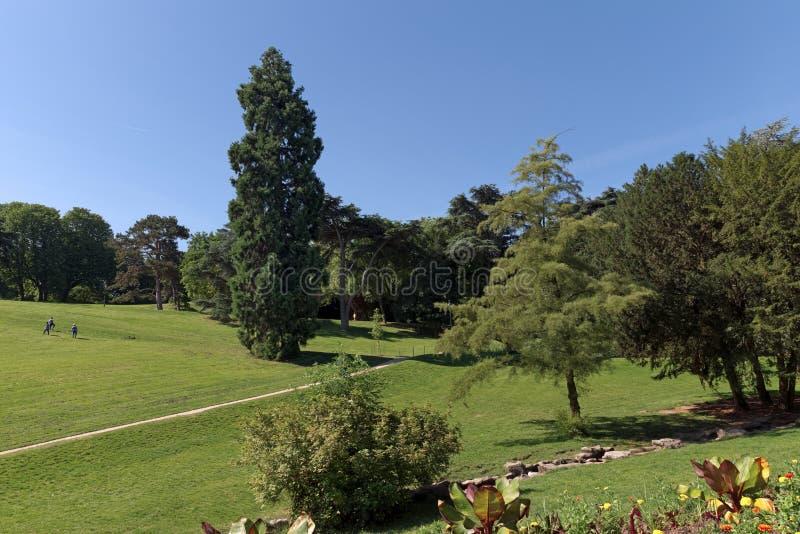 Buttes Chaumont park stock photo