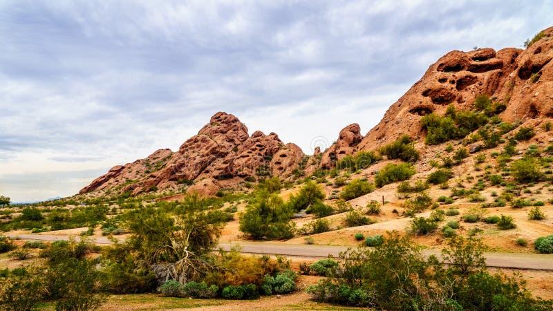 Buttesna för röd sandsten av Papago parkerar nära Phoenix Arizona royaltyfri fotografi