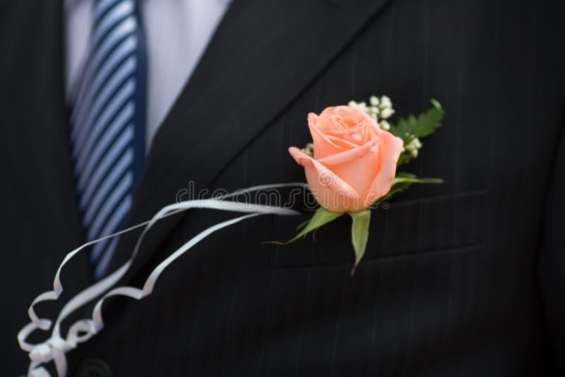 buttonhole wzrastał obrazy stock