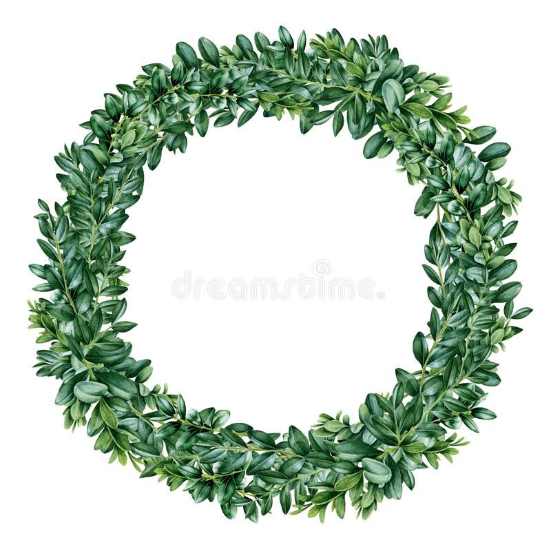Buxus met grote waterkleurillustratie Hand getrokken boxwood frame van groene bladeren en takken, perfect voor wenskaarten, invit royalty-vrije illustratie