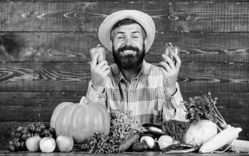 Buy fresh homegrown vegetables. Man with beard proud of his harvest vegetables wooden background. Farmer with organic. Vegetables. Excellent quality vegetables stock photo